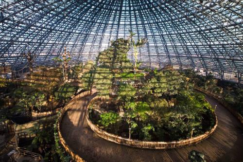 nouveauté zoo beauval 2020 dome équatorial