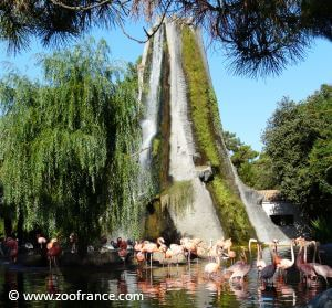 zoo de la palmyre ouverture horaires tarifs